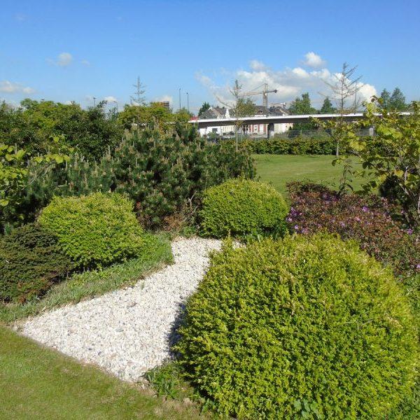 Arcadia Park Außenansicht Blick über Grünanlagen Vordergrund verschiedene Büsche