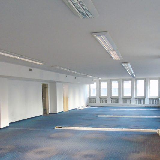 Große Bürofläche mit Fenstern, blauem Teppich und Holztüren