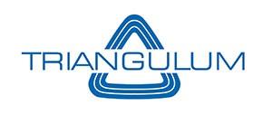Logo Triangulum mit Dreieck in Blau