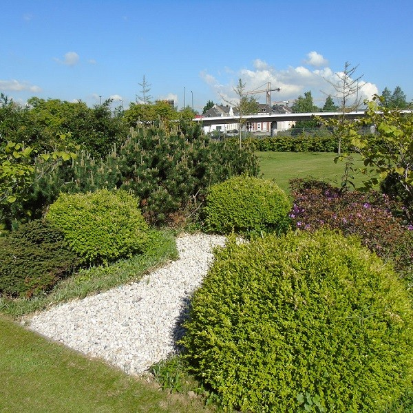 Arcadia Parc outdoor facilities with bushes and meadows