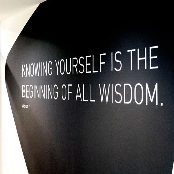 Triangulum Detail Wandgestaltung Aristoteles Zitat auf schwarzem Grund