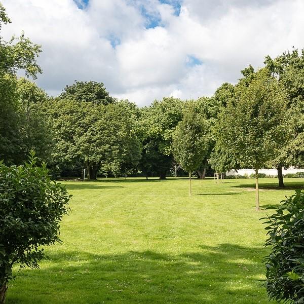 Zinkhüttenpark Außenansicht Parkanlage alter und junger Baumbestand