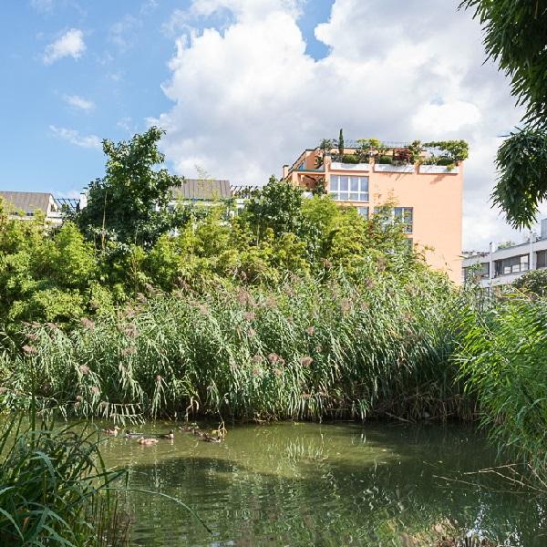 Prinzenpark Parkanlage Blick über mit Bambus bewachsenen Ententeich auf Wohnhausfassaden